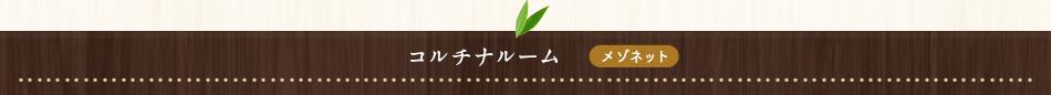 コルチナルーム【メゾネット】